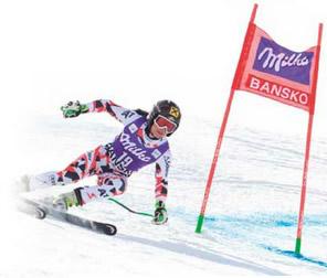Mt. Hood Alpine Race Center Offers Summer Gate Rentals